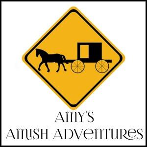 amys amish adventures www.amywritesromance.com Amy Lillard romance author
