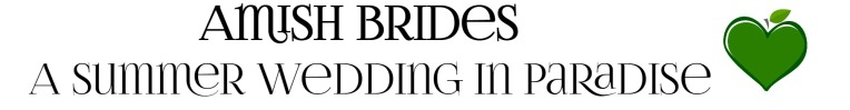 amish-brides-text